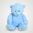 Baby Teddy (Blue)