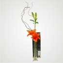 Lilies In Vase - Orange
