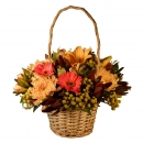 Rhapsody Basket