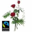3 Red Fairtrade Max Havelaar-Roses Medium Stem with Green